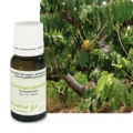 HUILE-ESSENTIELLE--YLANG-YLANG5-ml